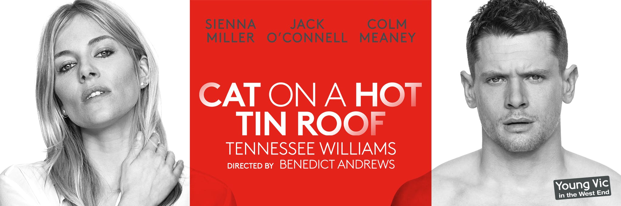 cat on a hot tin roof ending