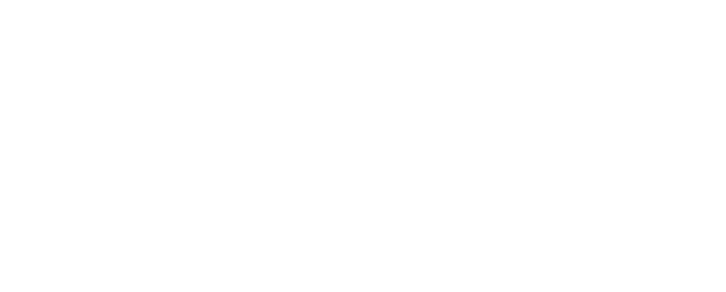 Immersive Shows