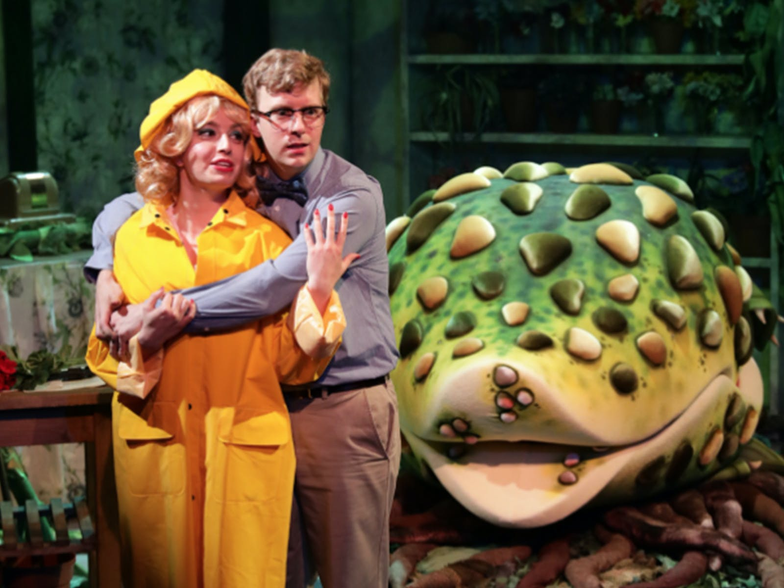 Little Shop Of Horrors Tickets Boston Todaytix
